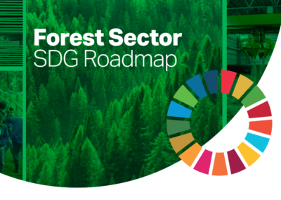 Forest Sector SDG Roadmap