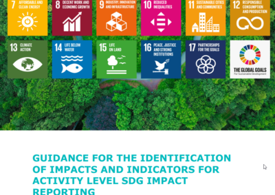 Guidance for the Identification of Impacts and Indicators for Activity Level SDG Impact Reporting