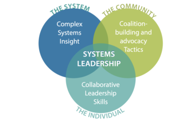 Systems Leadership Can Change the World – But What Exactly Is It?