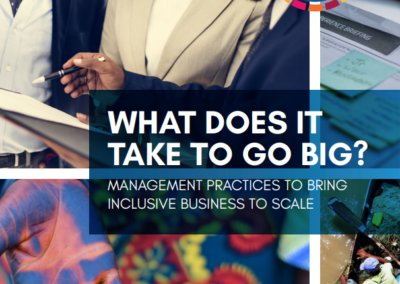 What Does it Take to Go Big: Management Practices to Bring Inclusive Business to Scale