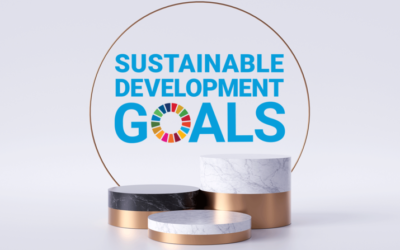 How to embrace circular business models to progress towards the SDGs
