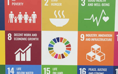 Are We Serious About Achieving the SDGs? A Statistician's Perspective