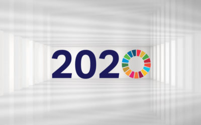 Entering a Decade of Action: Making the SDGs a matter of priority