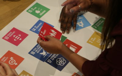 Accounting bodies call for urgent overhaul of corporate SDG reporting