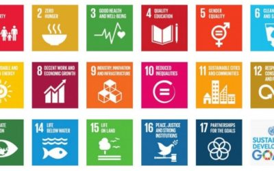 Business Reporter: Why Partnerships Are Crucial for Achieving the Sustainable Development Goals (SDGs)
