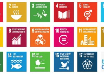 Report of the UN Secretary-General: Progress towards the Sustainable Development Goals