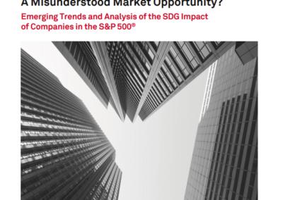 Sustainable Development Goals: A Misunderstood Market Opportunity?