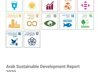 Arab Sustainable Development Report 2020
