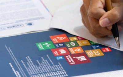 SDGs: Just 39% of businesses think they are taking enough action, UN survey finds