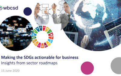 Making the SDGs actionable for business: Insights from sector roadmaps (PM)