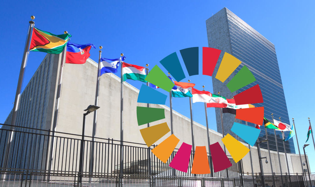 Why realizing the SDGs is more urgent than ever before