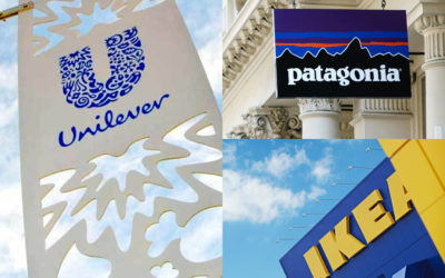 Patagonia, Unilever & IKEA Among The Brands Ranked By Experts As Global Sustainability Leaders