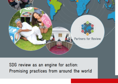 SDG review as an engine for action: Promising practices from around the world