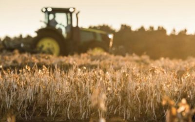 WBCSD supports the development of landmark SDG report focused on US Agriculture