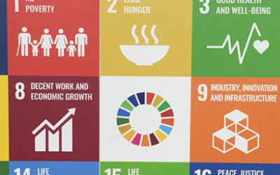 Civil Society Groups Introduce People's Scorecard on Fifth Anniversary of SDGs
