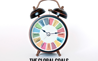 Is this a transformational moment for the Sustainable Development Goals?