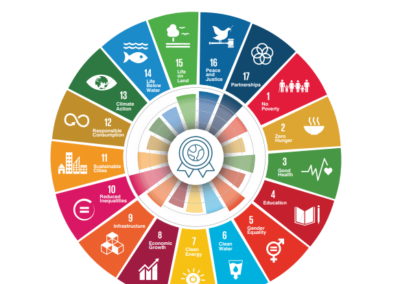 Linking Voluntary Standards to Sustainable Development Goals