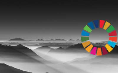 How the SDGs Can Change Your Organisation, From the Inside Out