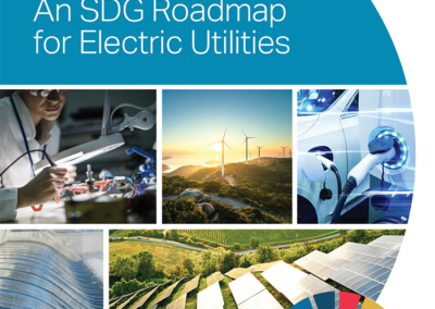 Sector Transformation: An SDG Roadmap for Electric Utilities