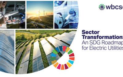 A new standard for electric utilities to maximize progress towards the SDGs
