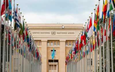 What is 'coopetition' and how can international organizations help?