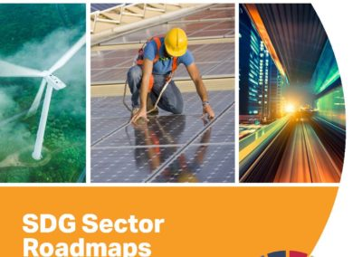 SDG Sector Roadmap: Guidelines to inspire sectors to drive transformation in support of the Sustainable Development Goals