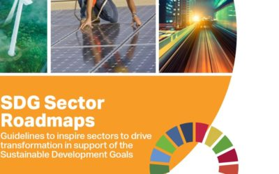 Better together: How SDG Sector Roadmaps can help to unlock transformation