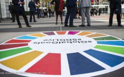 Opinion: We can no longer pursue profit without considering SDG impacts