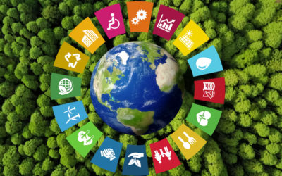 How SDG bonds could accelerate a green recovery