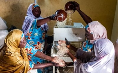 To achieve the SDGs we must first transform how we feed the world